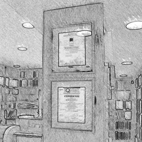 Registros oficiales