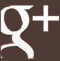 Logo-link google+